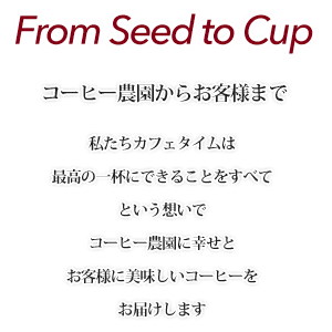 from seed to cup
