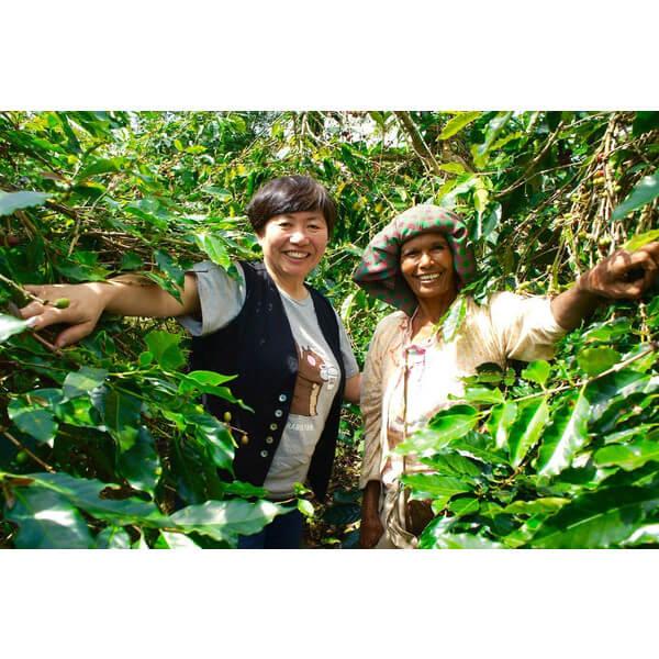 コーヒー生豆 マンデリン ロングベリー6